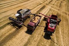 Ущерб сельскому хозяйству России от ЧС в 2019 году оценили в 9,5 млрд рублей