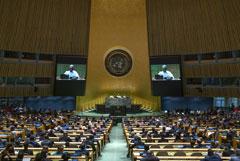 В ООН заблокировали оба проекта резолюции по прекращению огня в Идлибе