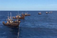 В Приморье задержали больше 260 северокорейских рыбаков-браконьеров