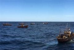 ФСБ сообщила о новом массовом задержании браконьеров из КНДР в Японском море
