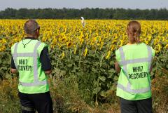 Парламент Нидерландов проголосовал за расследование роли Украины в крушении MH17