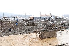 В Красноярском крае установили, что на артели произошло разрушение пяти дамб