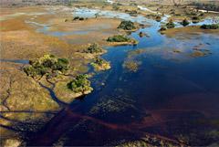 Ученые подвергли критике статью Nature о прародине человечества в Южной Африке