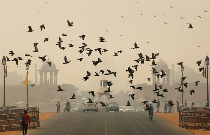 """Власти Дели признали город """"газовой камерой"""" и начали раздавать маски"""