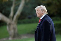 Трамп анонсировал визит в Белый дом собаки, раненной при ликвидации лидера ИГ