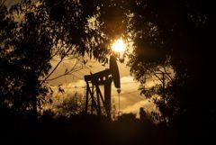 МЭА ожидает рост мирового спроса на нефть к 2025 году на 7%