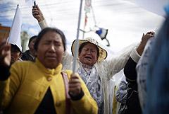 Парламент Боливии одобрил проведение новых всеобщих выборов в стране