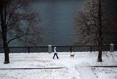 Вильфанд назвал 2019 год самым теплым в РФ за всю историю наблюдений