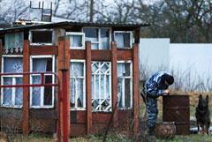 Органы опеки будут добиваться лишения прав родителей из Гатчины