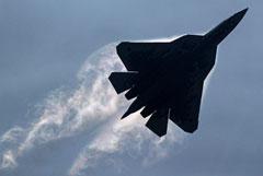 Источники рассказали о нескольких версиях крушения истребителя под Хабаровском