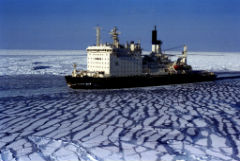 Разогреть Арктику