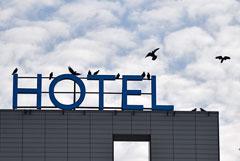 Бизнесмены попросили ввести в России невозвратные тарифы для отелей