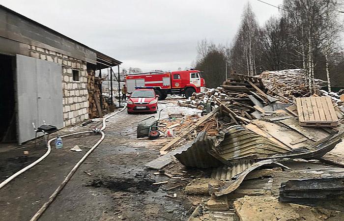 При пожаре в тепличном комплексе в Раменском погибли восемь человек