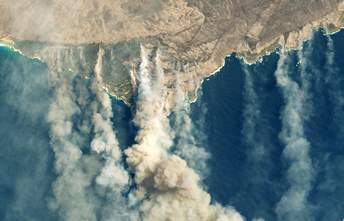 Австралии потребуется не менее века для восстановления после пожаров