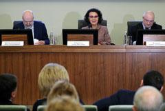 Рабочая группа заявила, что Госсовет не должен дублировать Совет Федерации