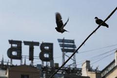 Костин подтвердил уход из ВТБ первого вице-президента Олюнина