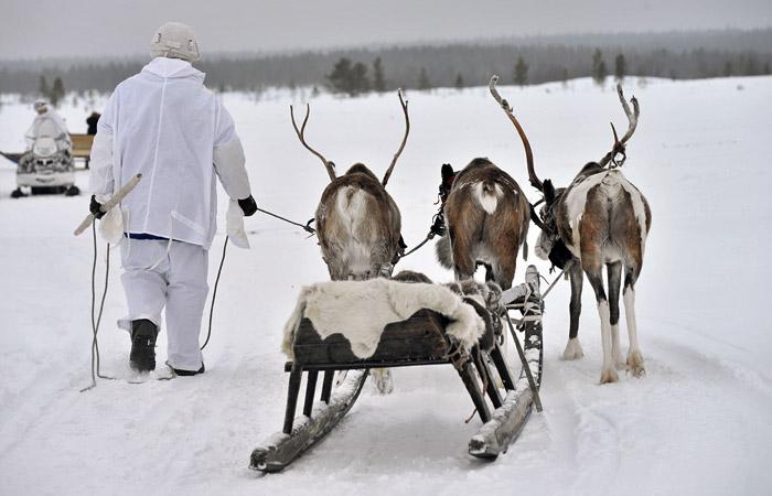 Вместо службы в армии россияне смогут поработать оленеводами или малярами