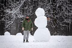 Глава Гидрометцентра рассказал о погоде в России в феврале