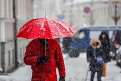 Январский температурный рекорд в Москве удивил синоптиков