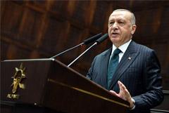 Эрдоган потребовал от Дамаска вывести войска из Идлибской зоны к концу февраля