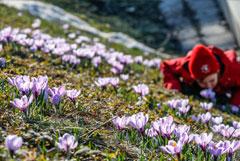 Гидрометцентр пообещал москвичам раннюю весну