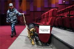 Россия вышла на первое место в Европе по посещаемости кинотеатров