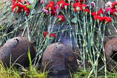 На месте массовых расстрелов под Великим Новгородом нашли останки 540 человек