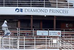 В Казани выписали поправившихся россиян, подхвативших COVID-19 на Diamond Princess
