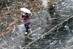 В центральную часть России на выходные придет холод из Арктики