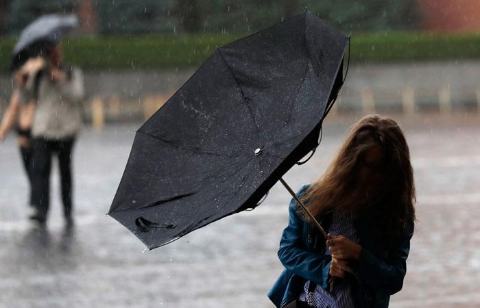 Источник рассказал о поваленных ветром деревьях в Москве