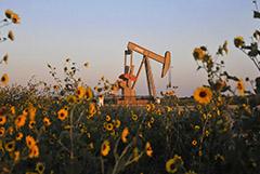 Нефтекомпании США разделились по вопросу об участии в сокращении добычи