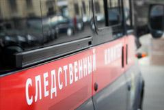 В Курской области девочки-подростки пытались убить своих опекунов и их четырех детей