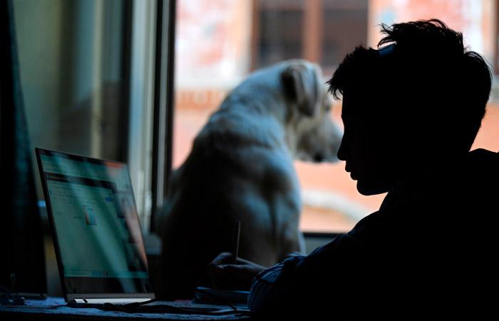 Около 40% родителей недовольны техническими проблемами онлайн-обучения в РФ