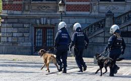 Полиция взяла под контроль бунтующих жителей Брюсселя