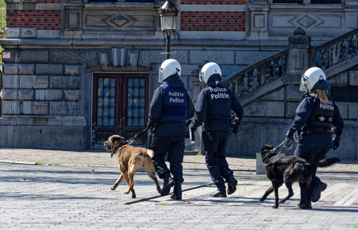 Число задержанных впроцессе беспорядков вБрюсселе возросло до 45