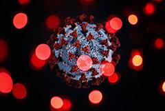 Президент РФ заявил, что пик эпидемии коронавируса не пройден даже в Москве