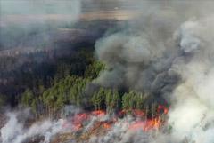Пожар в зоне отчуждения ЧАЭС приблизился к радиоактивным отходам Припяти