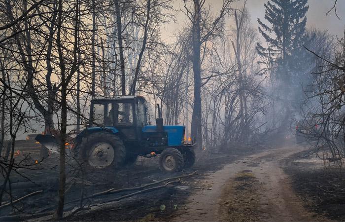 Дождь помог потушить пожар в Чернобыльской зоне