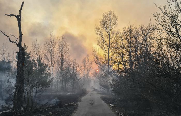 Глава МВД Украины сообщил о ликвидации очагов возгорания в Чернобыльской зоне
