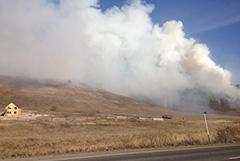 В администрации Усть-Кутского района Приангарья отвергли версию о поджоге леса чиновниками