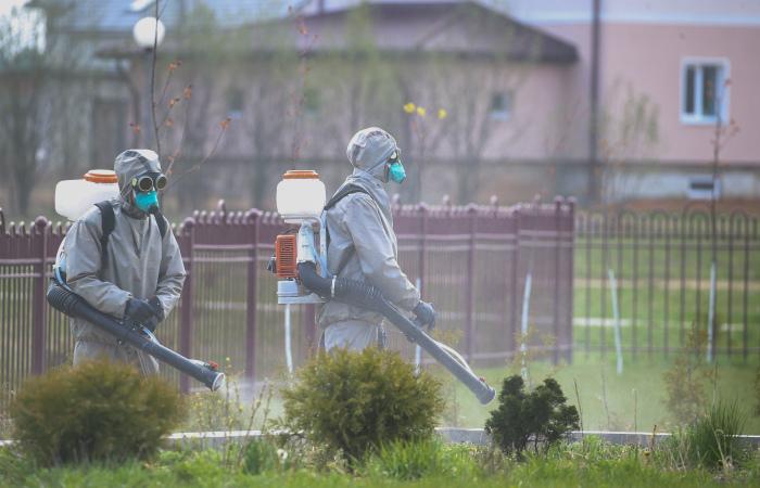 Число заразившихся COVID-19 в Белоруссии за сутки выросло на 784 человека