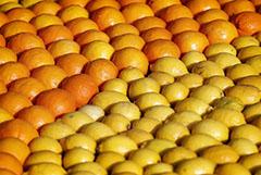 ФАС заподозрила картельный сговор на рынке лимонов