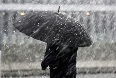В Москве и области выпадет мокрый снег