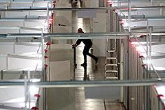 """Жалобы медиков госпиталя в """"Крокус Экспо"""" привели к прокурорской проверке"""