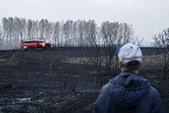 Greenpeace впервые собрал карту всех весенних природных пожаров в России