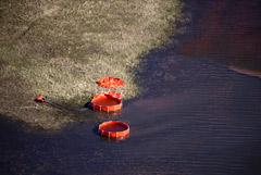 Нефтепродукты впитались в почву на несколько сантиметров из-за аварии на ТЭЦ в Норильске