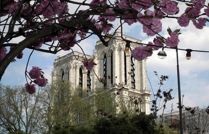 В фонде Нотр-Дама усомнились в возможности восстановить собор к 2024 году