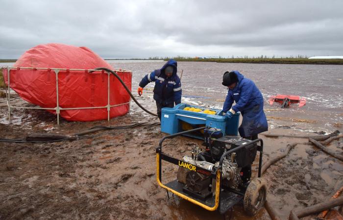 Спасатели рассказали о восстановлении фауны в районе разлива под Норильском
