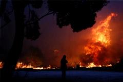 Сильный лесной пожар разбушевался близ Афин