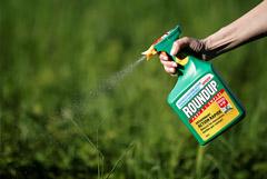 Bayer выплатит до $10,9 млрд из-за претензий по гербициду Roundup
